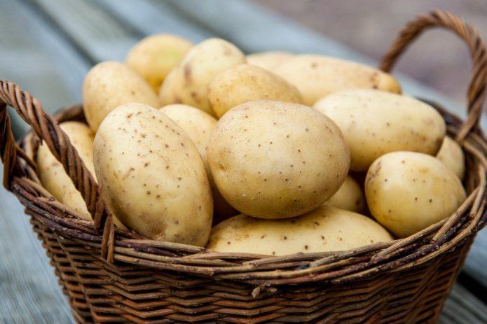 Картофельные клубни в корзине