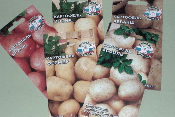 Пакетики с семенами картофеля
