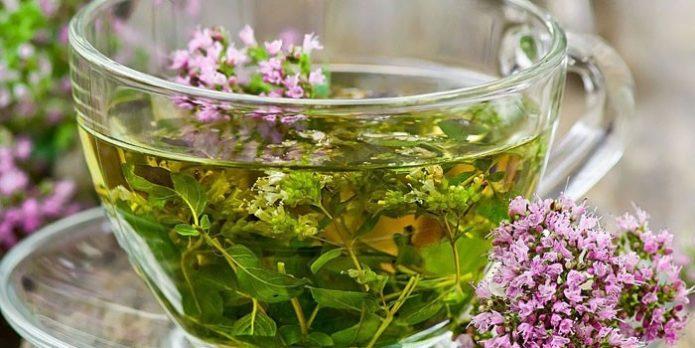 Чай из свежих цветов тысячелистника