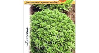 Упаковка семян сорта базилика Гвоздичный аромат