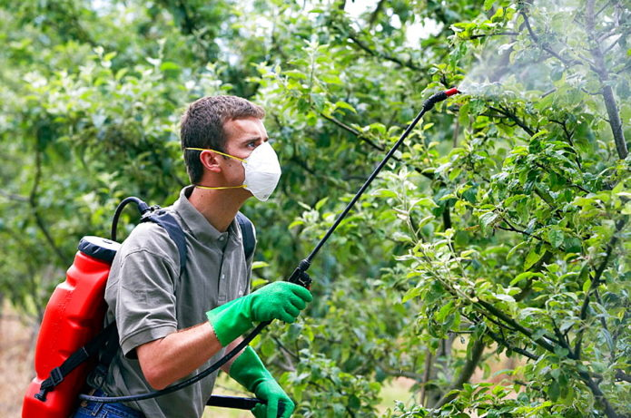 Мужчина с опрыскивателем в саду