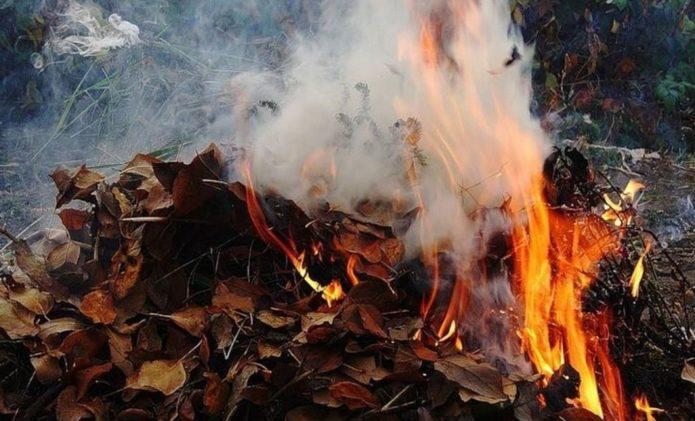Костёр из веток и опавших листьев