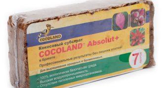кокосовый брикет