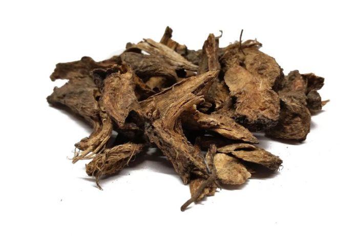 Сушеные корни дягиля