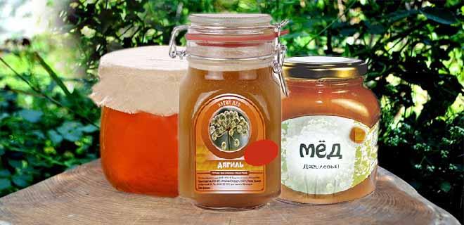 Мёд из дягиля