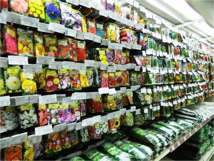 Магазин семян цветов