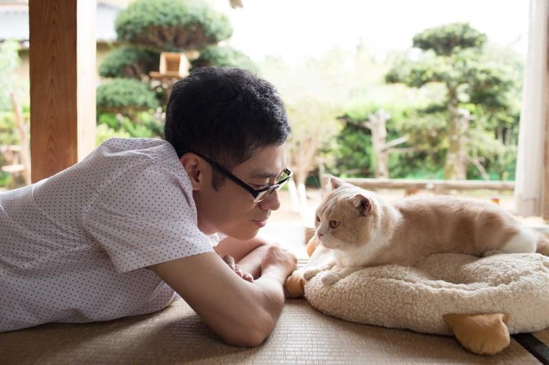 Японцам предлагают сдавать стареющих животных в специальные приюты