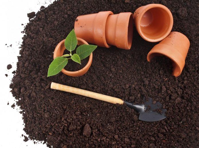 Земля, лопатка и горшки для рассады