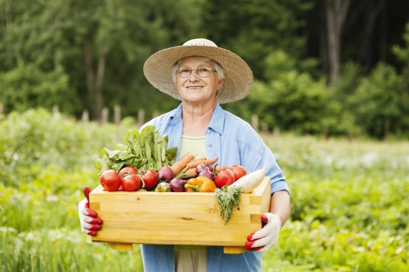 Лунный календарь садовода и огородника на сентябрь 2018 года