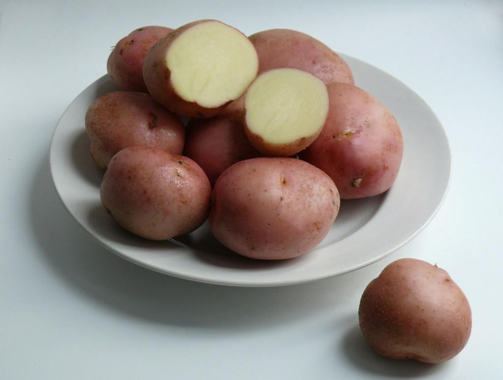 Картофель Романо — описание сорта