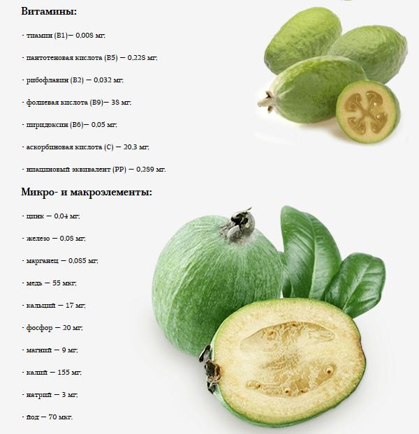 Таблица содержания витаминов в фейхоа