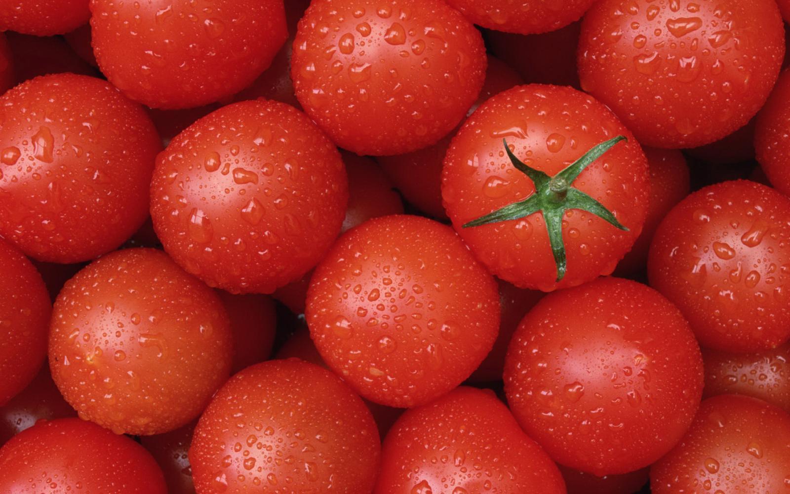 Что такое детерминантное растение помидоры